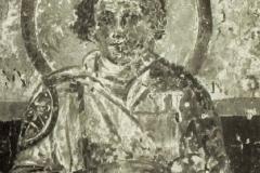 Plate-264.2