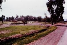 En route to Amse- High Atlas - Morocco - 1972
