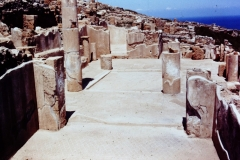 Selinute - Sicily - 1971